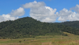 Sulawesi Biodiversity